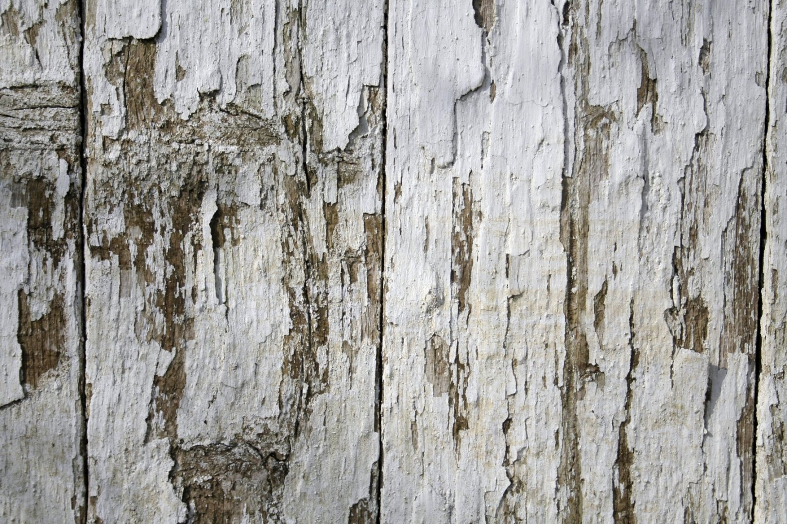 white-wood-texture-fence-texturepalace